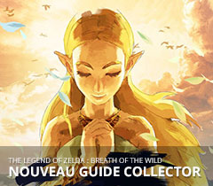 vignette-home-page-guide-collector
